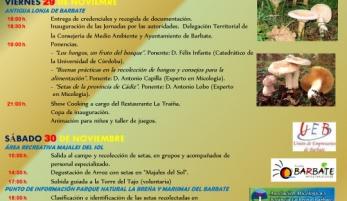 La recolección y cocina de setas centrará la actividad este fin de semana en La Breña