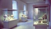 Galeria oficial MUSEO DE CÁDIZ
