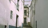 Galeria usuarios de localidad Alcalá de los Gazules