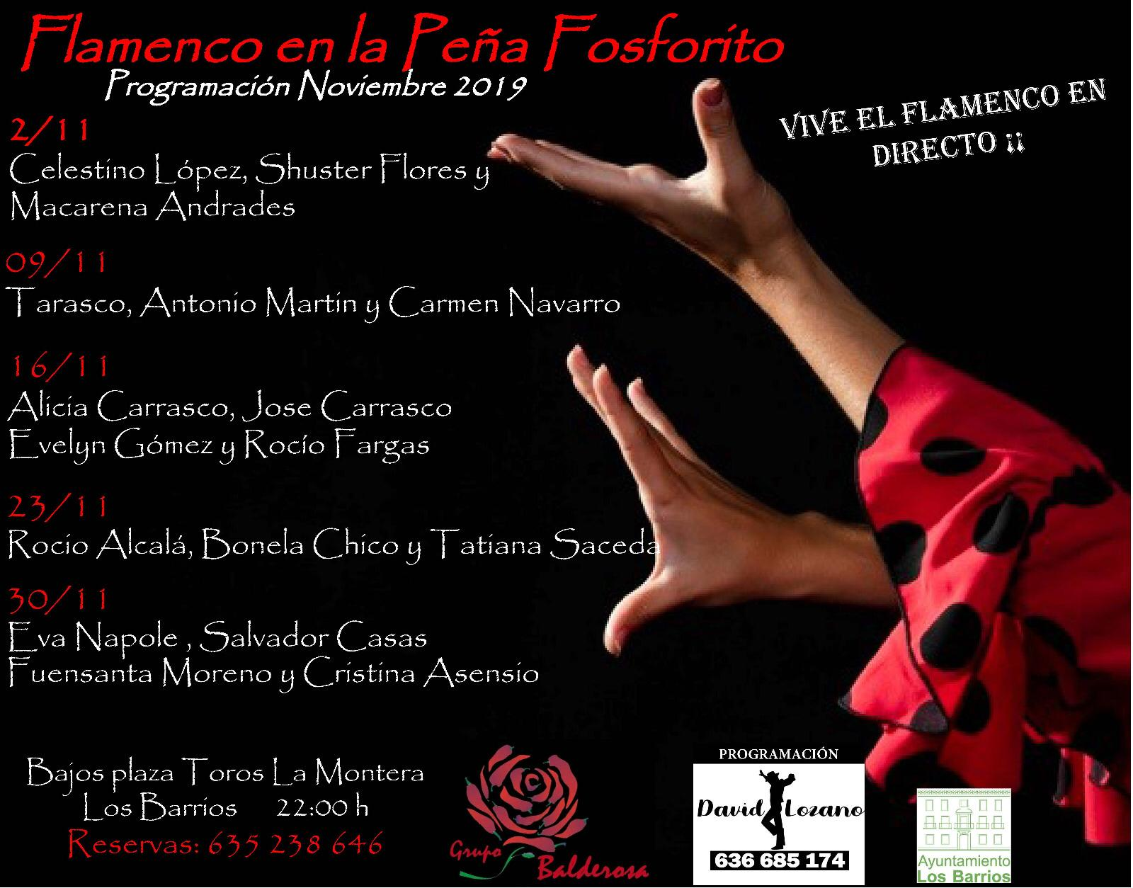 sites/default/files/2019_AGENDA/flamenco/Cartel Vivel el flamenco en directo Noviembre 2019.jpg