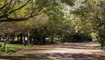Parque Municipal de la Toya