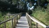Puente El Pinar de la María