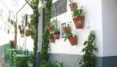 Galeria oficial Medina Sidonia