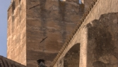 Galeria oficial Arcos de la Frontera