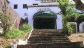 Galeria oficial El Bosque