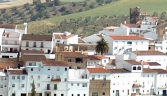 Galeria usuarios de localidad Torre Alhaquime